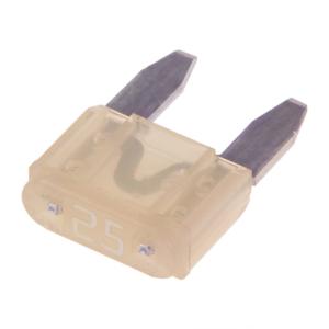 Kahvelkaitse / 25A / Mini